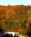 Herbststimmung in Weiler bei Monzingen - panoramio.jpg