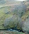 Hill burn joining the Feochan Bheag - geograph.org.uk - 105334.jpg