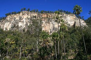 Carnarvon Gorge - Hill in Carnarvon National Park