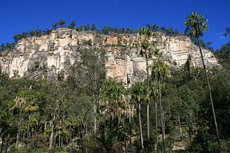 Carnarvon Gorge - Hill in Carnarvon National Park