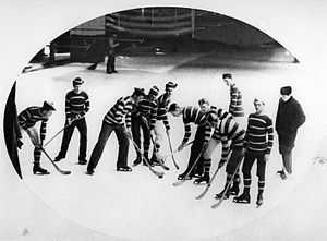 Crystal Palace (Montreal) - Hockey match, Crystal Palace skating rink, 1881