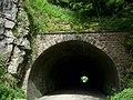Hopton Tunnel - geograph.org.uk - 819323.jpg