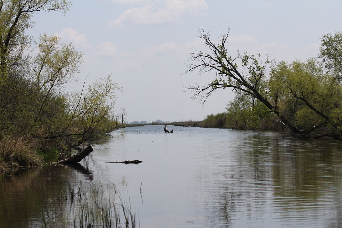 Horicon Marsh central channel.jpg