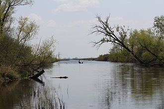 Horicon Marsh - Central waterway in the marsh