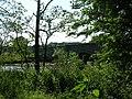 Howsham Bridge - geograph.org.uk - 24730.jpg