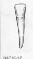 INCISOR (line art) (PSF I-470003 (cropped)).png