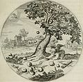 Iacobi Catzii Silenus Alcibiades, sive Proteus- (1618) (14726606636).jpg
