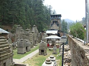 Jageshwar -  The temples at Jageshwar, believed to include the Nagesh Jyotirlinga.
