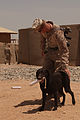 Improvised explosive device detection dog training on FOB Geronimo 120816-M-PO905-009.jpg