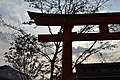 Inari shrine - panoramio.jpg