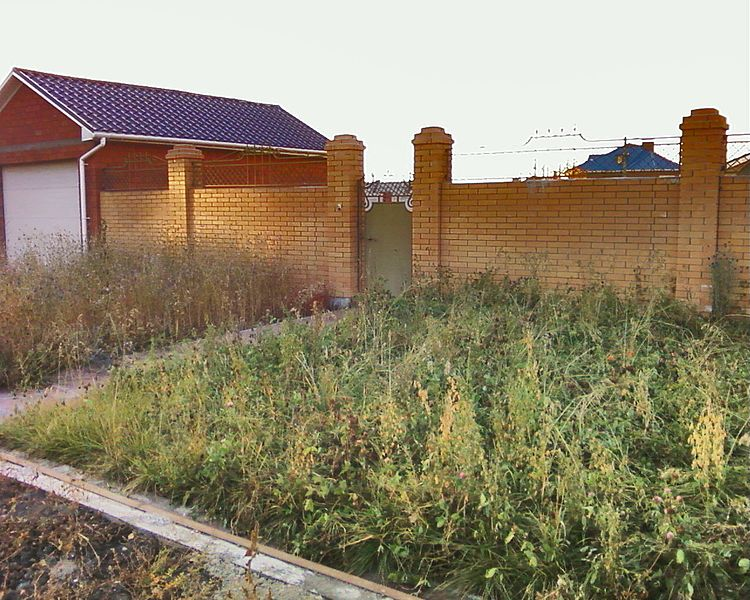 File:Irkutsk. Township Molodyozgnij. September 2012 - panoramio (50).jpg