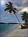 Isla Coroa de Aviao - panoramio.jpg