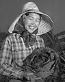 Japanese American woman agricultural worker with Cabbage in Gardena, California on 1951-03-12, from- Cabbage Farmer (cropped).jpg