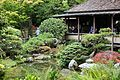 Japanese Tea Garden (San Francisco) (TK6).JPG