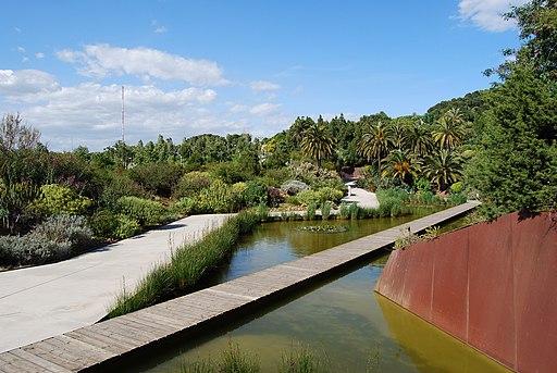Jardí Botànic de Barcelona scene
