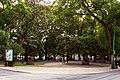 Jardim Nuno Álvares.jpg