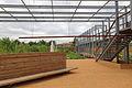 Jardins du Muséum de Toulouse 03.JPG