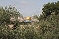 Jerusalem-Felsendom-50-durch Oelbaeume-2010-gje.jpg