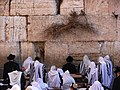 Jews-pray-in-the-Western-Wall-1.jpg