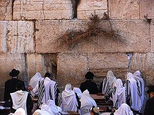 English: Religious Jews prey in the Western Wa...