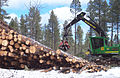 John Deere 2054 DHSP forestry swing machine, Kaibab National Forest 1.jpg