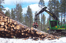 A timber operation.