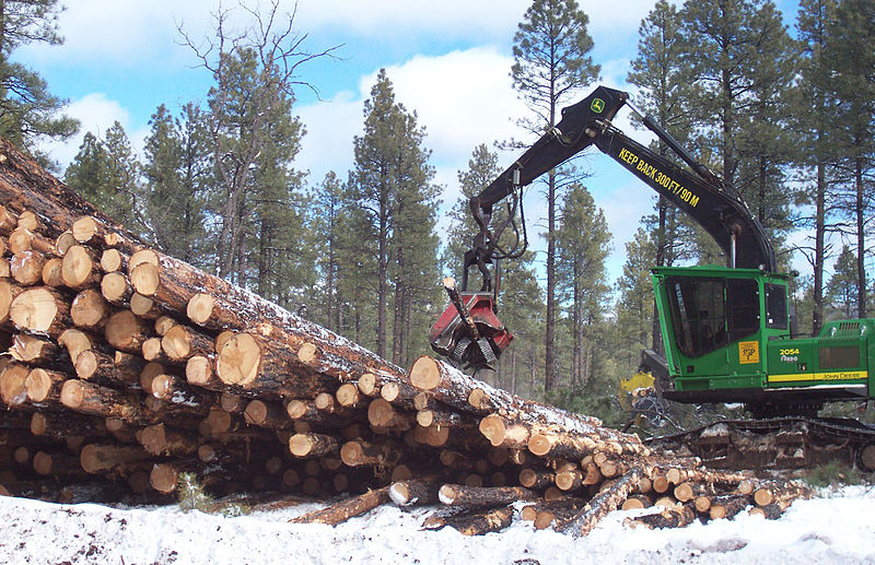 800px-John_Deere_2054_DHSP_forestry_swing_machine%2C_Kaibab_National_Forest_1.jpg