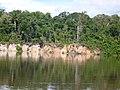 Jutaí - State of Amazonas, Brazil - panoramio (2).jpg