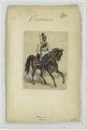 Kürassier. 1866 (NYPL b14896507-90505).tiff