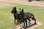 K9 MWD Chrach N178 Poses with Bronze of Chrach.jpg