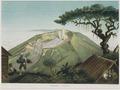KITLV - 50H7 - Junghuhn, Franz Wilhelm (1809-1864) - Mieling, C.W. - Gunong Gedeh (Gunung Gede) - Colour lithography - 1853-1854.tif