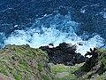 Kaiwi State Scenic Shoreline 07.jpg