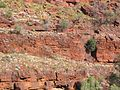 Karijini National Park (2051689345).jpg