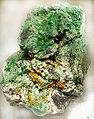 Kasolite-Malachite-Metatorbernite-jr-17a.jpg