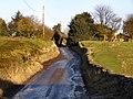 Kiln Lane - geograph.org.uk - 1704077.jpg