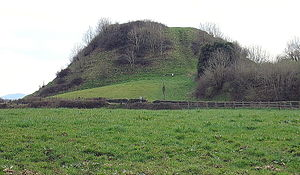 New Inn, County Tipperary - The Motte at Knockgraffon