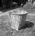 Koš, novejši tip, Kočarija 1956.jpg