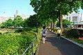 Kokyo runnning.jpg