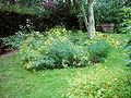 Kräutergarten Hammer Park 006.jpg