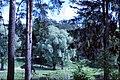 Kratovo, Moscow Oblast, Russia - panoramio.jpg