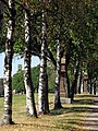 Kreuzweg zur Wallfahrtskirche Witterschnee in Löffingen.jpg