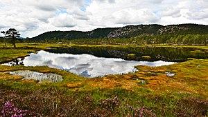 Evje og Hornnes - Rural landscape of the municipality