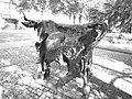 Kuh Skulptur , Nostalgie, 1975. Von Giuliano Pedretti (1924–2012) 1.jpg