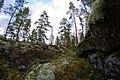 Kukkovuori - panoramio.jpg