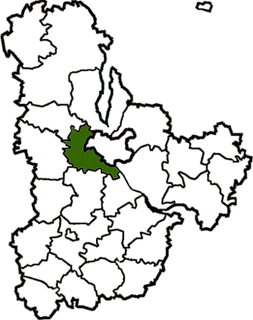 Kyiv-Sviatoshyn Raion Former subdivision of Kyiv Oblast, Ukraine