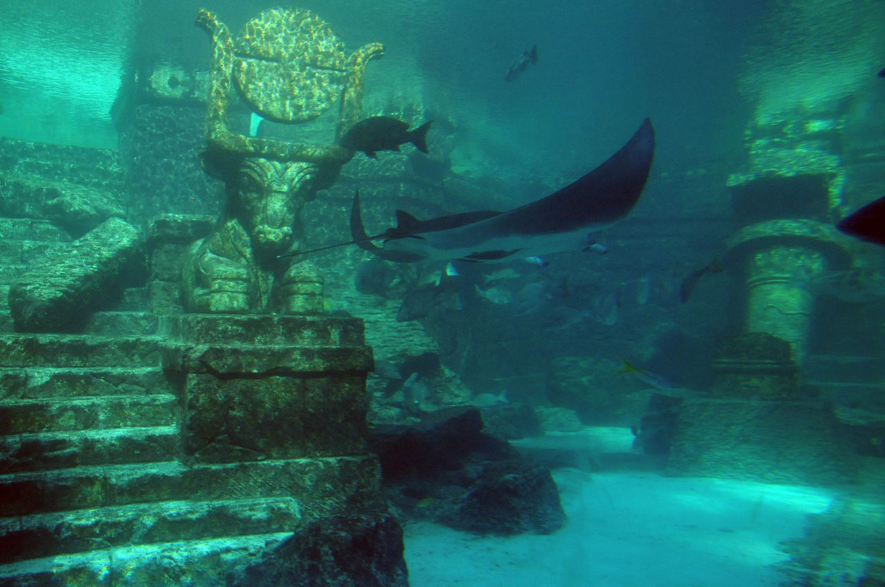Image Result For Atlantis The Lost