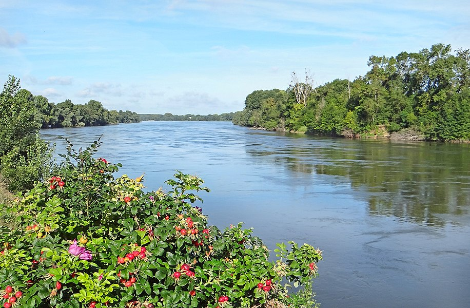 A droite, l'île aux chevaux car on ne voit qu'un bras de la Loire à cet endroit de la levée ligérienne.  Saint-Jean-de-la-Croix est au sud d'Angers. Un peu plus loin, se trouve la confluence avec la rivière Maine.