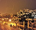 La villa comunale di Vittoria sotto la nevicata del 2015.jpg