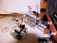 Labor-Gerätschaften zur Mikroskopie (Laboratory equipment for Microscopy).jpg