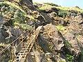 Ladder Trail.jpg